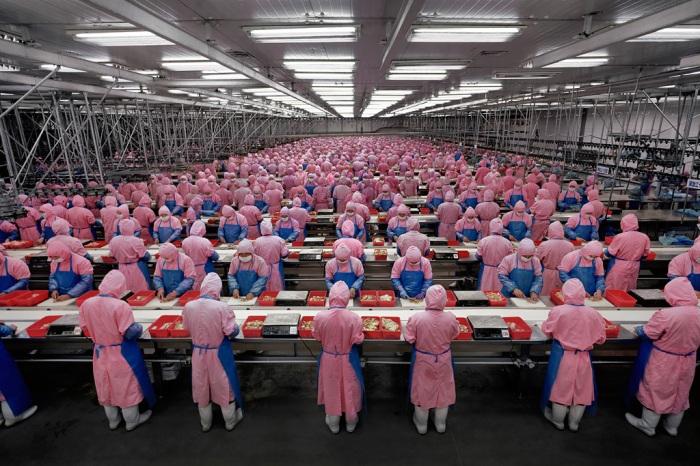 CHINA_Economia de Escala