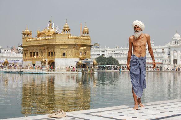 Sikh_pilgrim_at_the_Golden_Temple_(Harmandir_Sahib)_in_Amritsar,_India