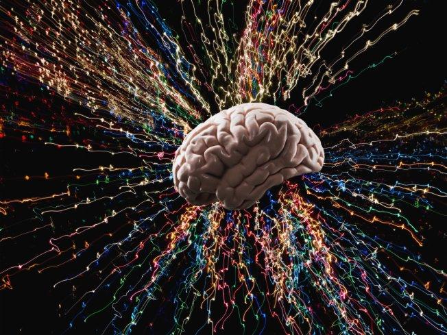 Complexidade do Cérebro