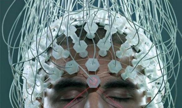 Neuroeconomia em Plugs