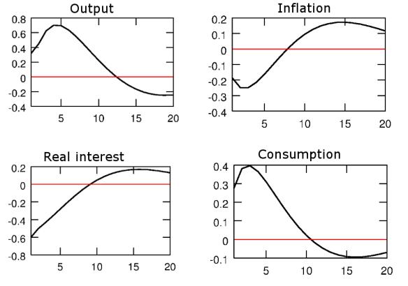 cee_2005_impulse_response_functions